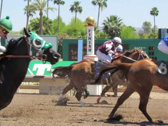Turf paradise live betting rules mohr bettinger company